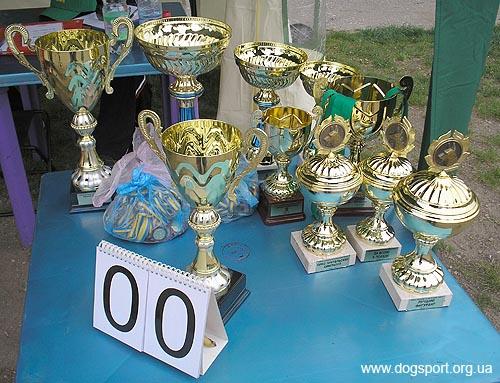 Нагороди спортсменам