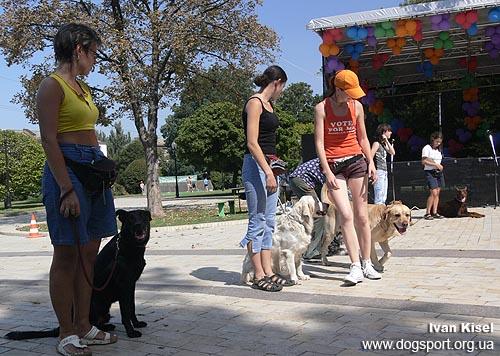 Парунова Катерина з Річіком виконують слалом між собаками