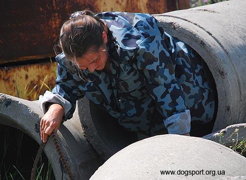 На завалах працюють карело-фінська лайка Туся і Олена Шкатулова