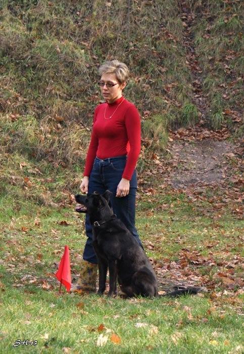 Міський собака - 1. Олена Бортнікова