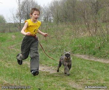 Київ. Наймолодший учасник змагань - О.Поврозюк та Вега