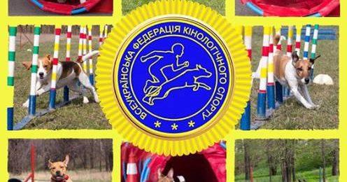 Конференція ВГО «Всеукраїнська федерація кінологічного спорту»