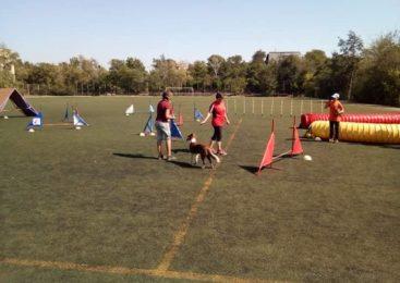 Тренінг з Ольгою Класс