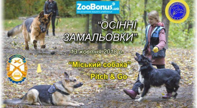 Відкриті змагання міста Києва за програмами «Пітч-енд-гоу» та «Міський собака» 13.10.2018
