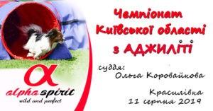http://www.aspirit.com.ua/