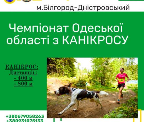 Чемпіонат Одеської області з канікросу 28.03.2020