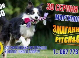 Змагання з Pitch & Go у Маріуполі 30.08.2020