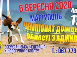 Чемпіонат Донецької області з аджиліті 06.09.2020